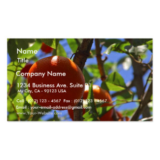 Oranges Fruit Trees Business Card Templates