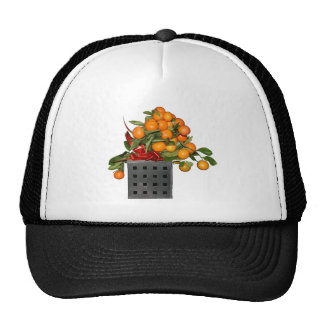 Oranges Mesh Hat