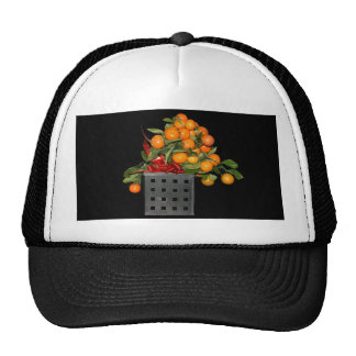 Oranges Hats