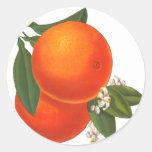 Oranges Vintage Crate Art Template Round Sticker