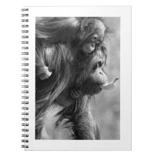 Orangutan#8-Notebook Spiral Notebook