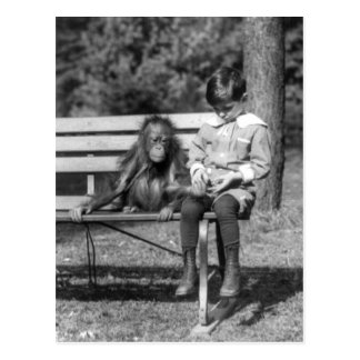 Orangutan and Boy - National Zoo Postcard