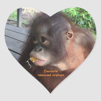 Orangutan Baby Daniellein Borneo Heart Sticker