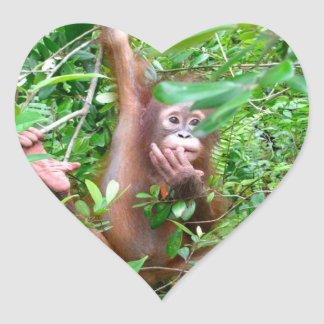 Orangutan Baby in Borneo Jungle Heart Sticker