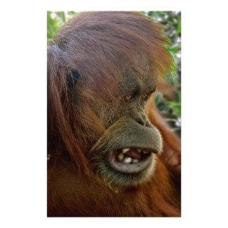 "Orangutan ""Bad Hair Day"" Personalized Stationery"