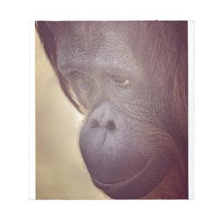Orangutan Blue Notepad