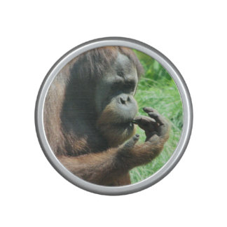 Orangutan Bluetooth Speaker