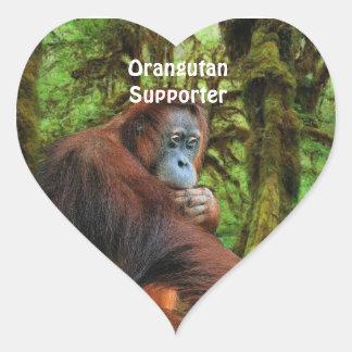 Orangutan & Jungle Great Ape Primate Stickers