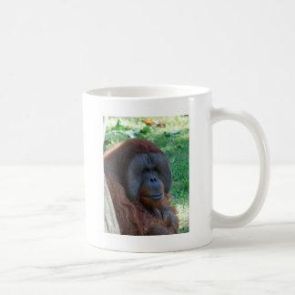 orangutan mug