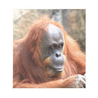 Orangutan Notepad