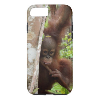 Orangutan Orphan Jeffrey Junior in Jungle School iPhone 8/7 Case