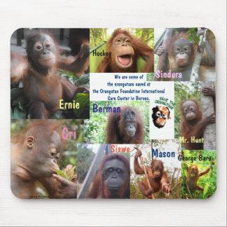 Orangutan Orphan Rescue Mouse Pad