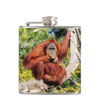 Orangutan photo hip flask