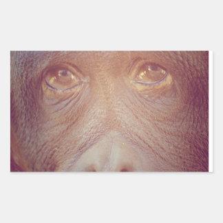 orangutan sad face rectangular sticker
