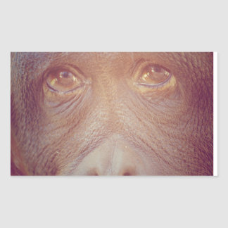 orangutan sad face sticker