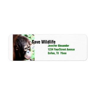 Orangutan Save Wildlife Return Address Label