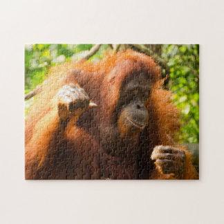 Orangutan Singapore Zoo . Jigsaw Puzzle