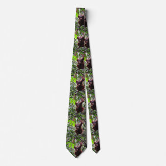 Orangutan Tie