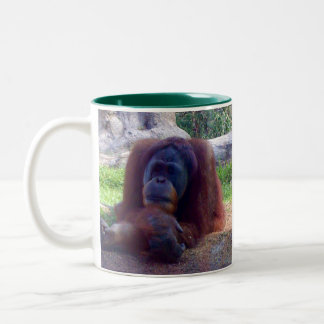 Orangutan two tone coffee mug