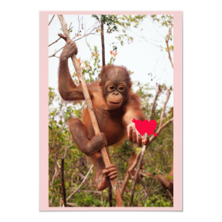 Orangutan Valentine Cards 13 Cm X 18 Cm Invitation Card