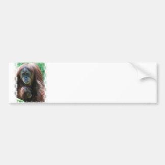 Orangutan with Baby  Bumper Sticker