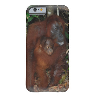Orangutans Mother and Baby Barely There iPhone 6 Case
