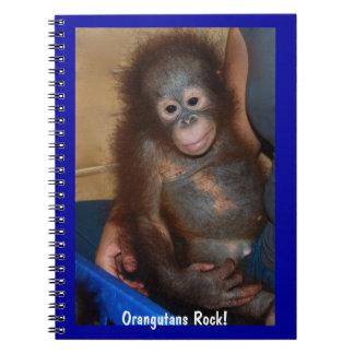 Orangutans Rock Notebooks
