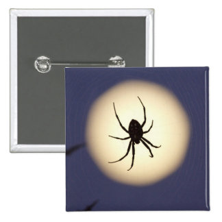 Orb spider on web with full moon, in south 15 cm square badge