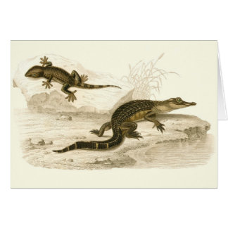 Orbigny - Alligator and Gecko Greeting Card