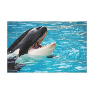 Orca canvas