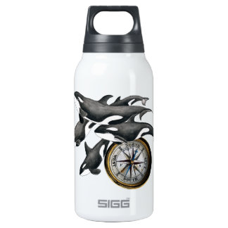 Orca Pod Compass Insulated Water Bottle
