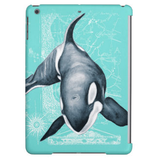 Orca Teal White