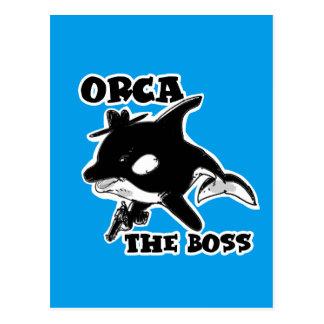 orca the boss cartoon style funny illustration postcard