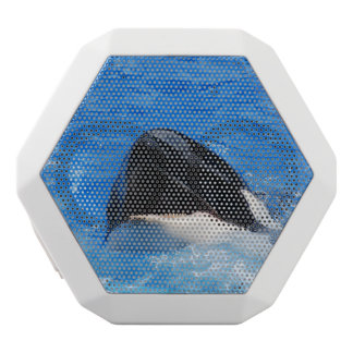 Orca Whale White Boombot Rex Bluetooth Speaker