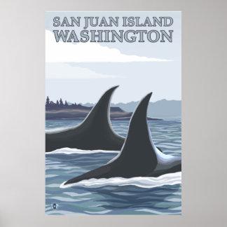 Orca Whales #1 - San Juan Island, Washington Poster
