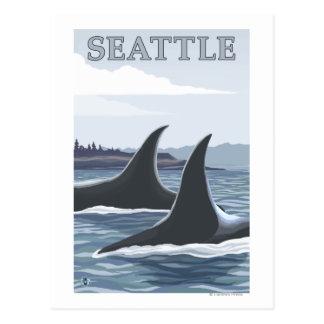 Orca Whales #1 - Seattle, Washington Postcard