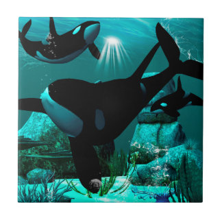 Orcas Ceramic Tile