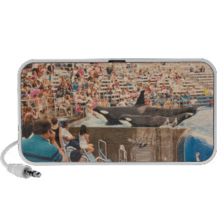 Orcas on Show Travel Speaker