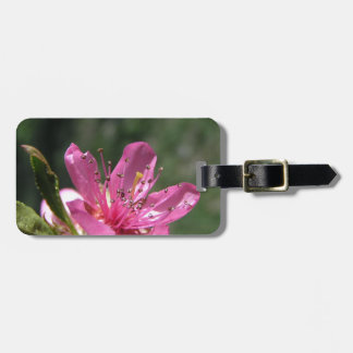 Orchard Blossom, pretty in Pink Luggage Tag
