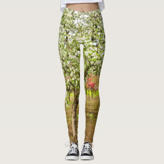 Orchard in Bloom Leggings