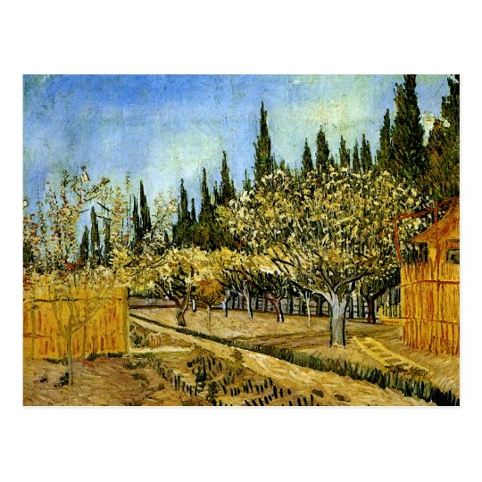 Orchard in Blossom, Cypresses, Vincent van Gogh Postcard