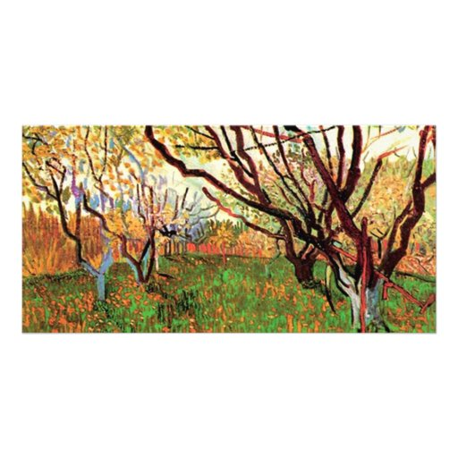 Orchard in Blossom, Vincent van Gogh. Custom Photo Card