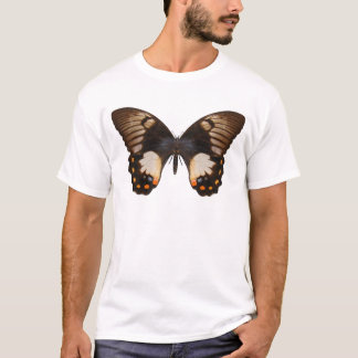 Orchard Swallow Tail Butterfly T-Shirt