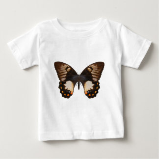Orchard Swallow Tail Butterfly T Shirts