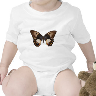 Orchard Swallow Tail Butterfly Bodysuit