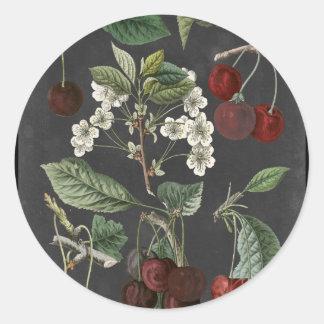 Orchard Varieties I Classic Round Sticker