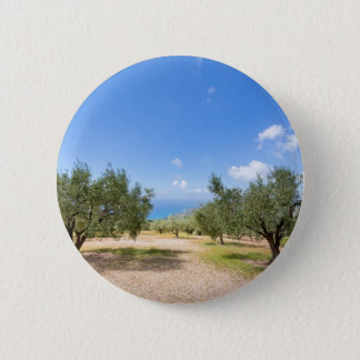 Orchard with olive trees at sea in  Greece 6 Cm Round Badge