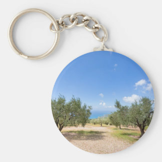 Orchard with olive trees at sea in  Greece Basic Round Button Key Ring