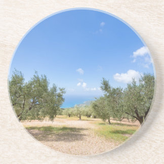 Orchard with olive trees at sea in  Greece Coaster