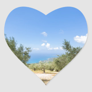 Orchard with olive trees at sea in  Greece Heart Sticker